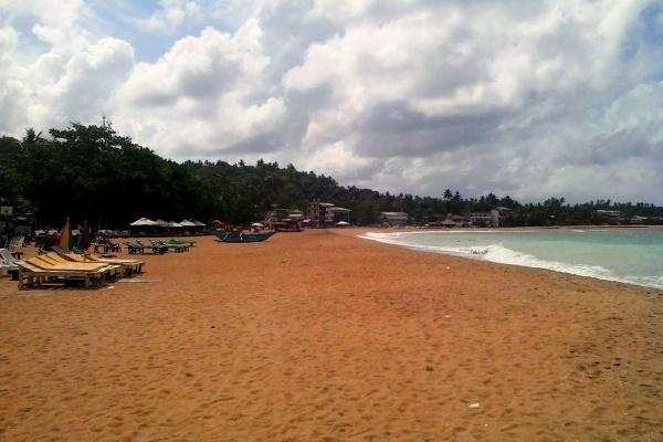 Зонты и лежаки на первой береговой линии курорта Унаватуна в Шри-Ланке - Фото
