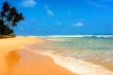Сколько стоит путевка на Шри-Ланку