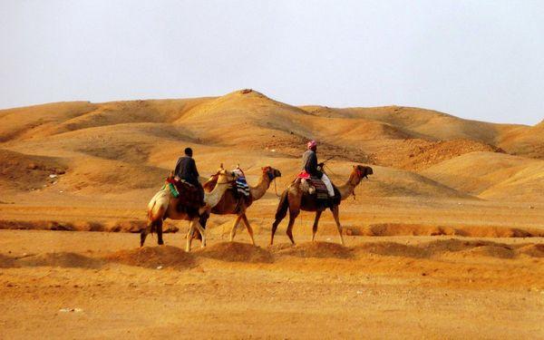 Экскурсии на верблюдах по древней пустыне