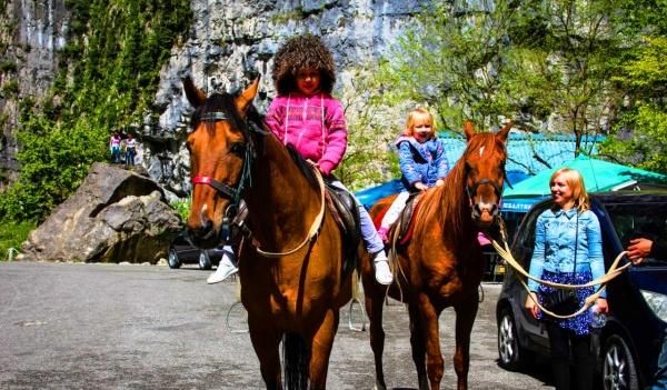 Конные экскурсии в Абхазии возле озера Рица в мае
