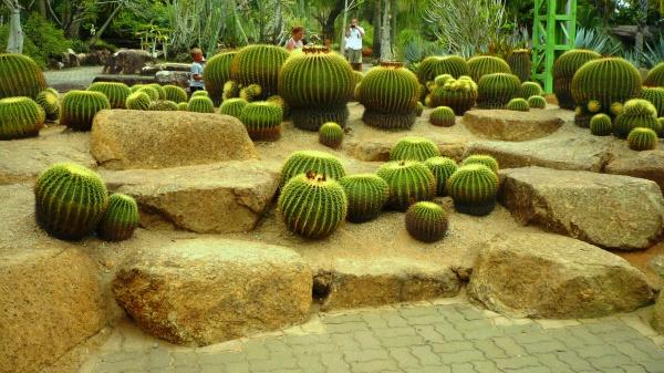 Достопримечательный восхитительный парк в Патайе