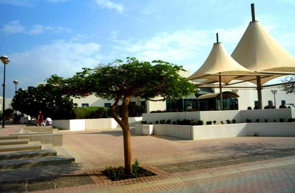 Удивительный и неповторимый отдых в ОАЭ