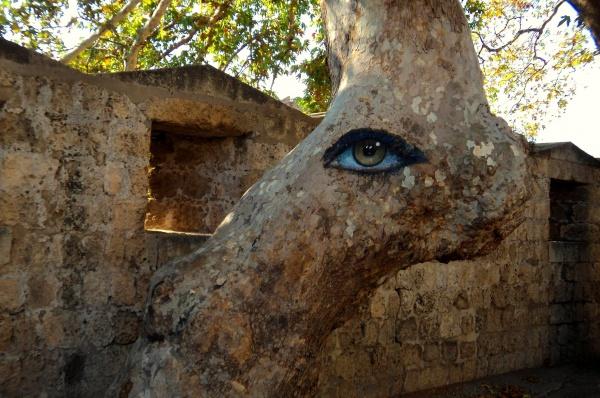 остров Родос, рисунок на дереве в старом городе