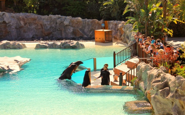 На острове есть аквапарк Сиам Парк (Siam Park)