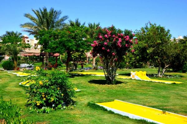 Зеленая полянка Египта или ...