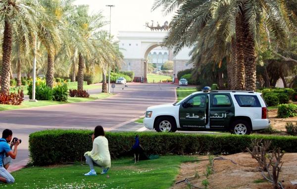 Экскурсионный тур - Современный Дубай