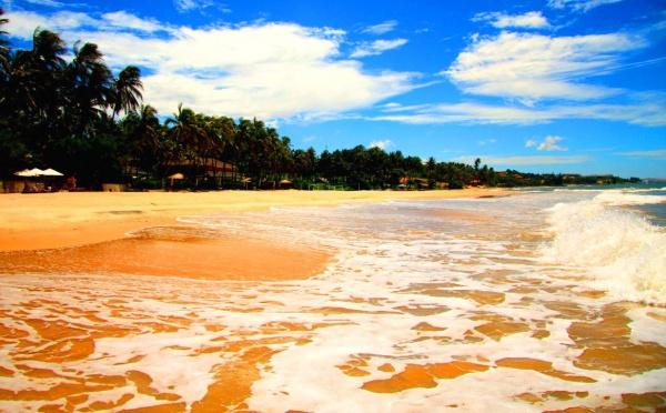 Во Вьетнаме отдых один из лучших – пальмы, море и золотой песок
