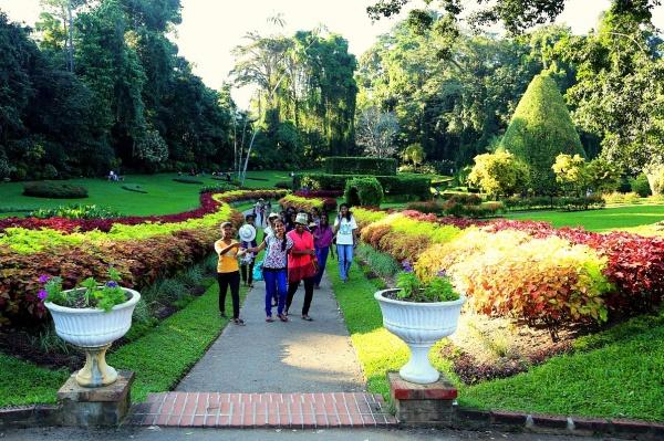 город Канди осенью на острове Шри-Ланка, Королевский ботанический сад