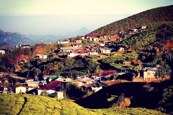 А это долина чайных плантаций Нувара-Элия на острове Шри-Ланка