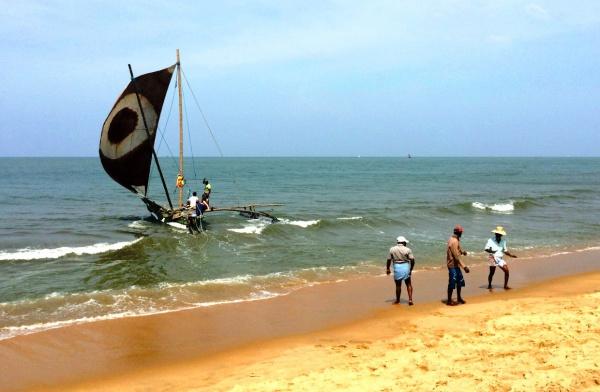 Шри-Ланковские покатушки на катамаране под парусом для всех желающих