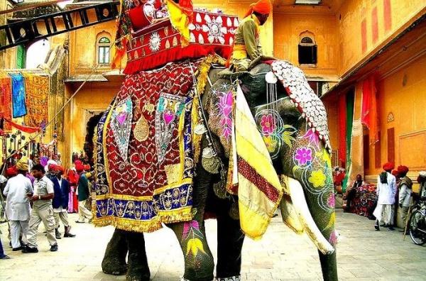 В Индии вам дадут возможность прокатиться на слоне