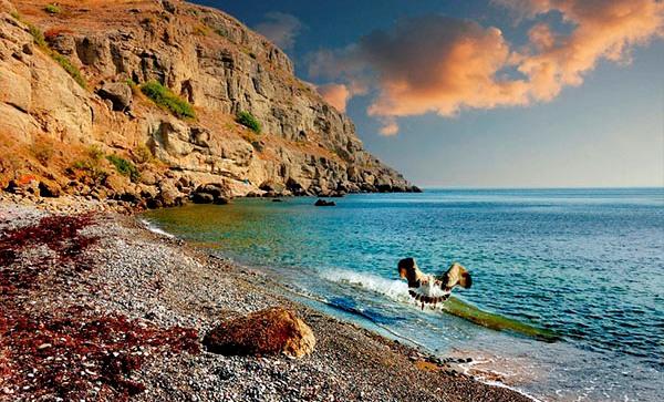 Где недорого отдохнуть летом на море?