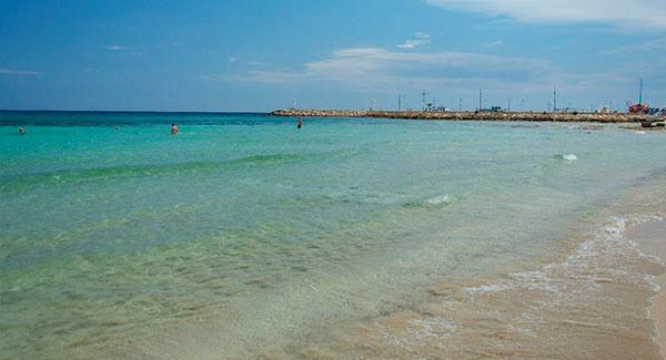 Отдых в Кипре в августе
