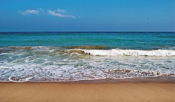 Прекрасный отдых на Черном море
