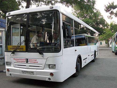 Автобус Геленджик Архипо-Осиповка