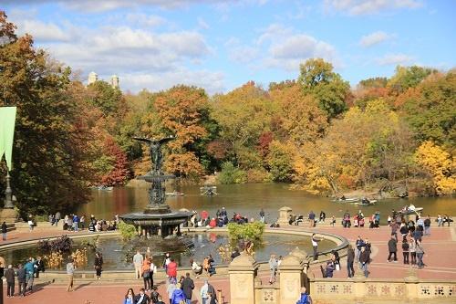Центральный парк города