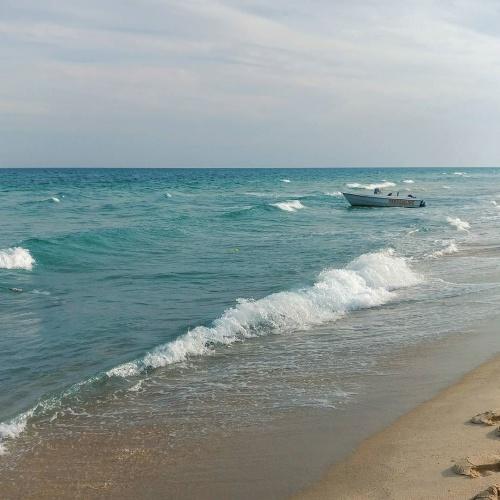 какое море омывает остров джерба