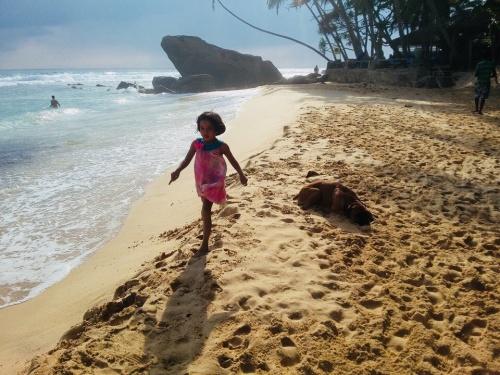 Пляж Далавелла в Шри-Ланке