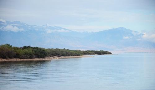 Июль на озере
